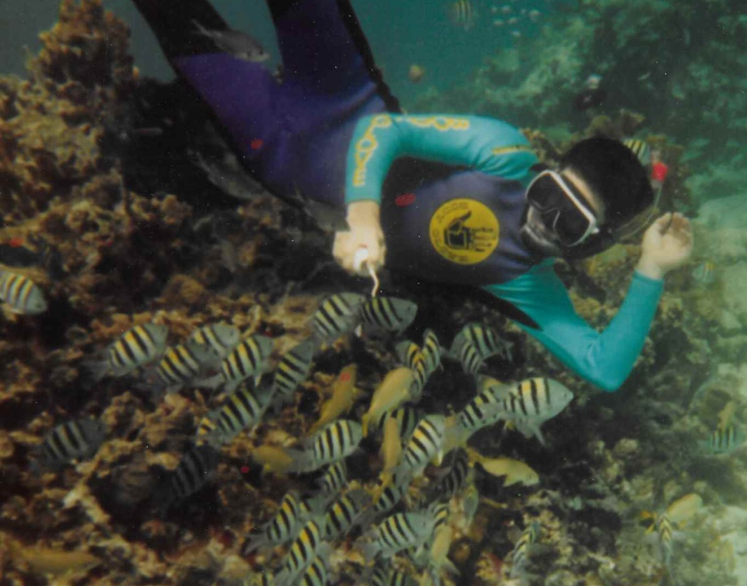 gw blog grand cayman russ fish